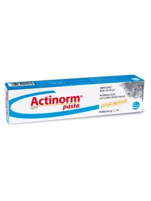 ACTINORM Pasta Gatti 65 g.